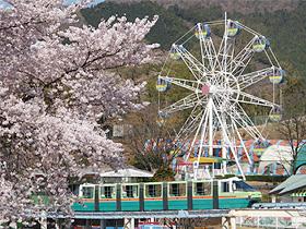 桜のピークは過ぎたが週末に様々な催しを開催