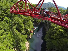 最大高さ62メートルを誇る猿ケ京バンジージャンプ