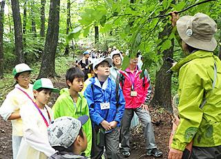 昨年度、北毛青少年自然の家(高山村)周辺で実施された自然観察会